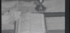 Torah Wisdom